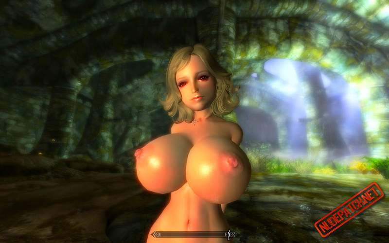 Video game nude mod